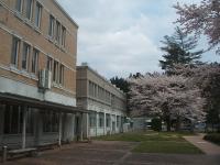 2015-04-18-013.jpg