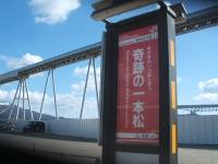 陸前高田市、復興、土盛り、一本松2015-02-15-088