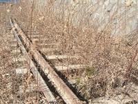 陸前高田市、復興、土盛り、一本松2015-02-15-099