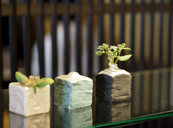 花と緑の器たち_野田1