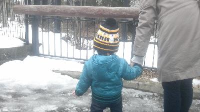 雪の動物園3