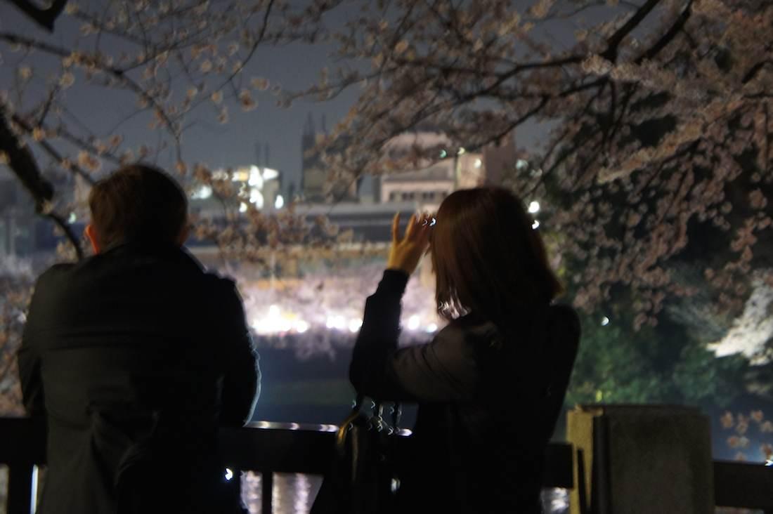千鳥ヶ淵緑道の夜桜を見る仕事帰りのビジネスマンやビジネスウーマン