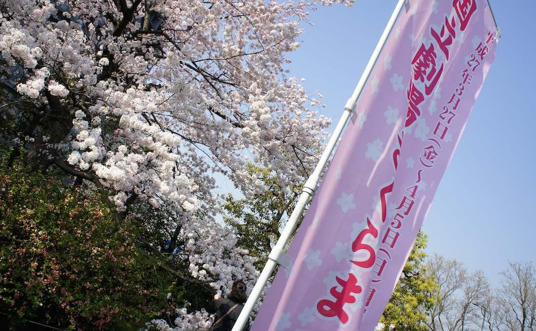【桜の隠れた名所】 国立劇場のさくらまつりで桜を見てきた