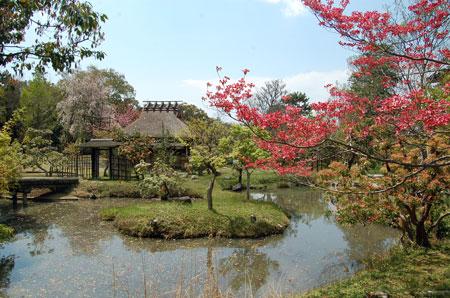 11.4.25奈良博庭園