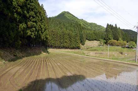 15.5.11三郎岳山容2