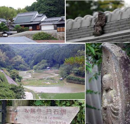 15.5.28白石畑風景