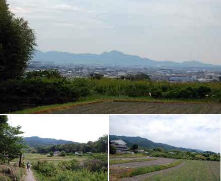15.5.29風景