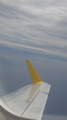 FDAイエローと富士山