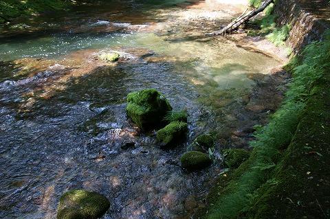 伏伸の滝DSC04969