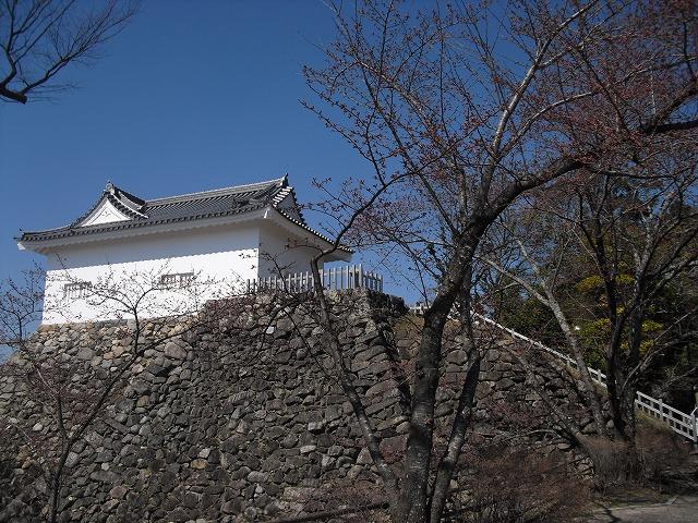 H27.3.27亀山公園さくらCIMG2167