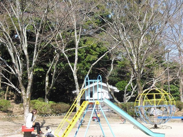 H27.3.27亀山公園さくらCIMG2165