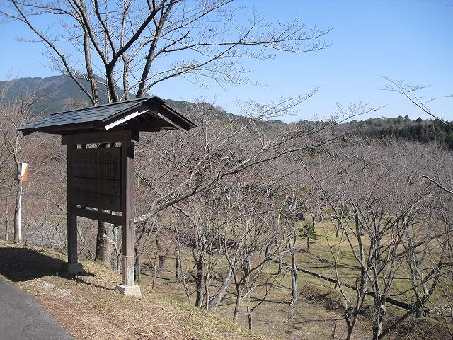 H27.3.27正法寺山荘跡さくらCIMG2169