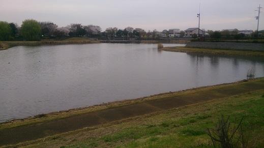 となりの池