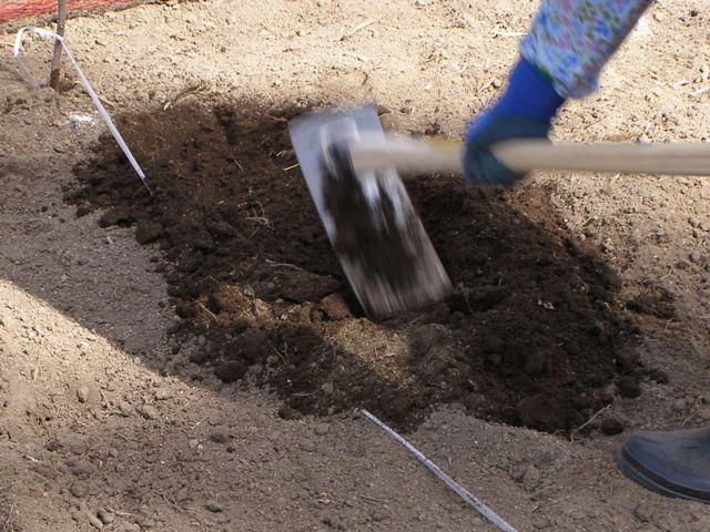 溝掘り0503