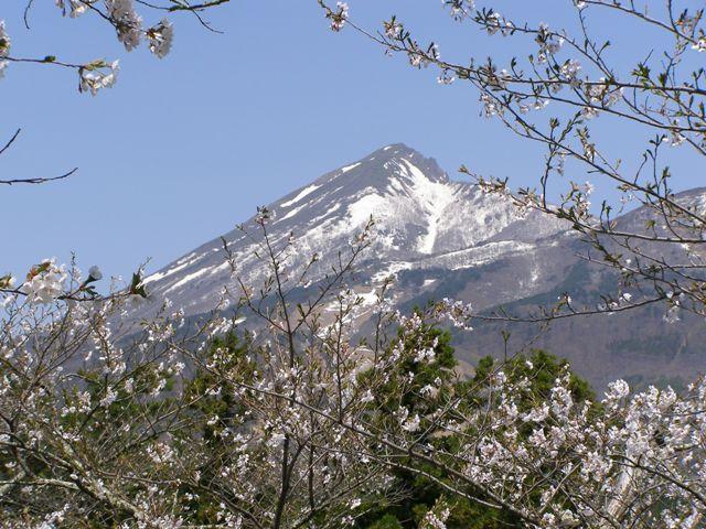 亀ヶ城50505