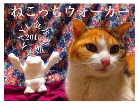 fc2blog_20150706211853b1d.jpg