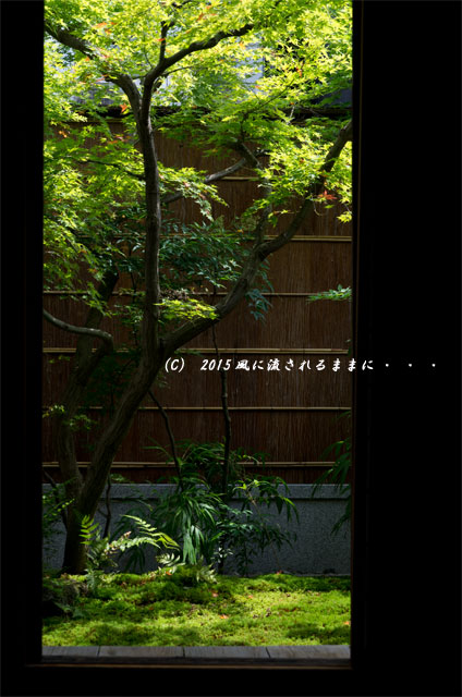 2015年7月 奈良・元興寺 桔梗の花9
