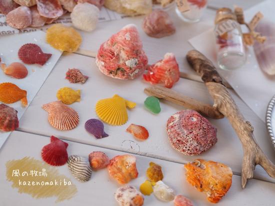 貝殻で作る作品