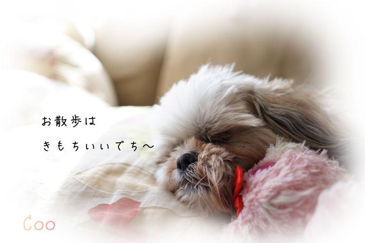 DSC05704_0974.jpg