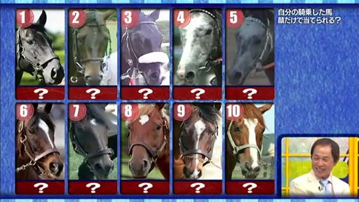 okabe_horse_face_quiz01.jpg