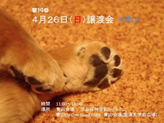 ケンの家ポスター20150426青山