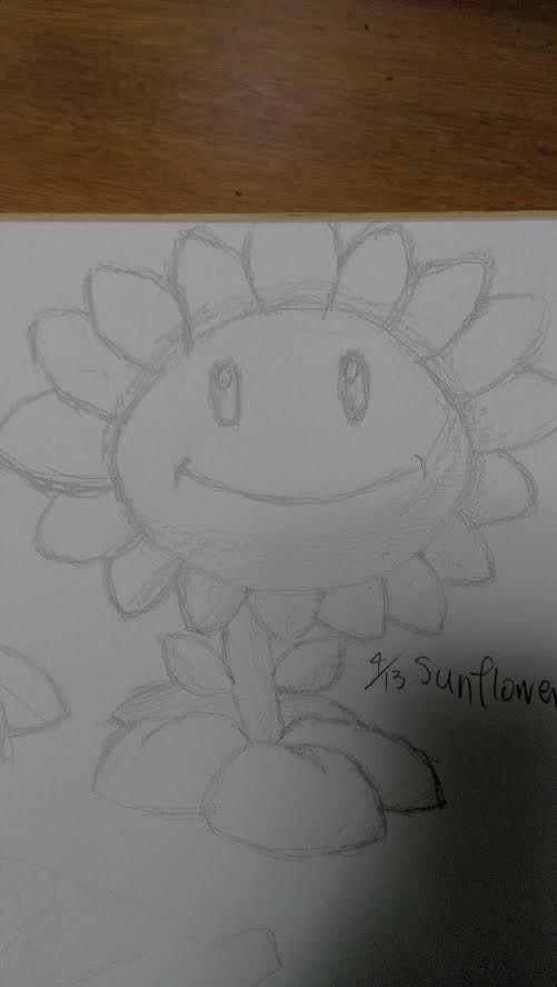 2015-04-13sunflower2.jpg