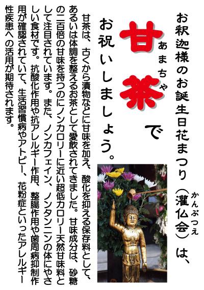 甘茶ポスター2A4_3