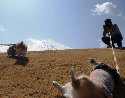 富士山 10