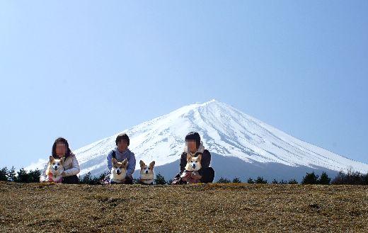 富士山バック3家族修正済み