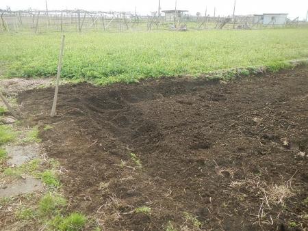 稲の苗床作り (3)