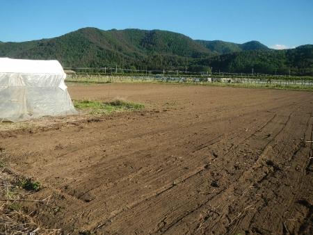 桔梗農場耕起作業 (3)