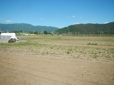 桔梗農場耕起作業 (1)