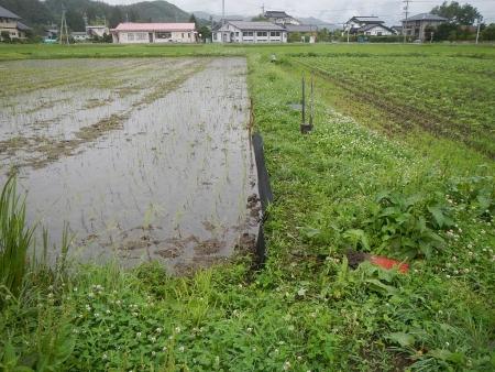 畦板設置作業 (2)