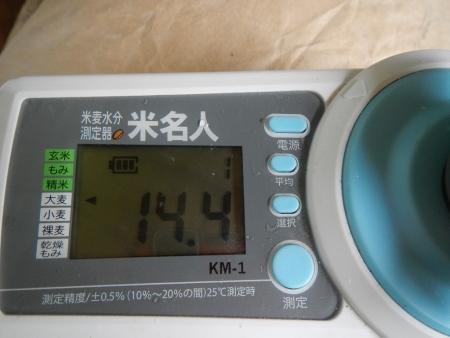 大麦作業 (1)