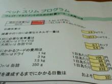 $やわらかい風-2011062810340000.jpg
