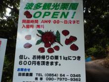 やわらかい風-2011092414230002.jpg