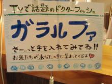 やわらかい風-2011100920570001.jpg