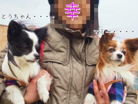 猪名川公園4