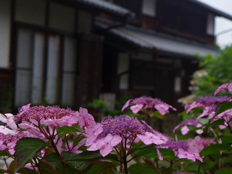 B20150704P_fuukei_P1070113.jpg