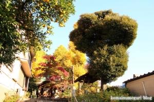 正八幡神社(文京区関口)13