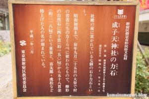 成子天神社(新宿区西新宿)26