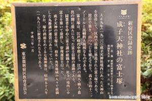 成子天神社(新宿区西新宿)28