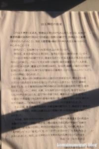 山王神社(藤沢市大鋸)3