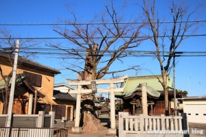 八幡神社(府中市是政)1