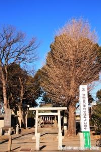 八幡神社(府中市南町)1