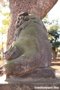 碑文谷八幡神社(目黒区碑文谷)29