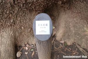 玉川神社(世田谷区等々力)46