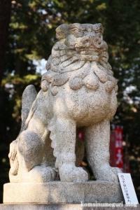 玉川神社(世田谷区等々力)10
