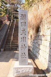 瀬田玉川神社(世田谷区瀬田)2