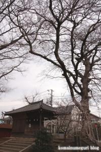 須賀神社(世田谷区喜多見)6